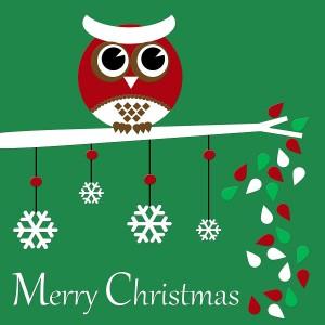 Merry-Christmas-Owl-3